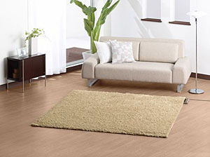 Panasonic Electric Rug