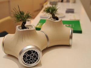 jvc bonsai